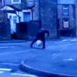 Find This Scumbag Who Repeatedly Punched A Dog On UK Street