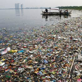 'There Will Be More Plastic In The Oceans Than Fish By 2050' Warns Expert