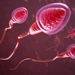 New Contraceptive Method Allows Men To Turn Sperm On And Off