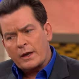 Here's What Caused Charlie Sheen's 'Tiger Blood' Meltdown