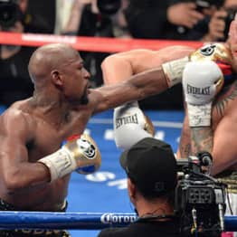 Mayweather Vs McGregor Super Fight Was One Of Most Pirated Ever
