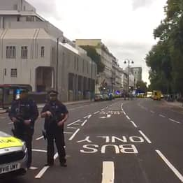 Police Confirm Natural History Museum Collision Driver Had No Motive