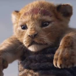 Dad Begs Parents To Leave Their Kids At Home So They Don't Ruin Lion King