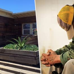 San Franciscans Raise $60,000 To Stop Homeless Shelter Opening In Wealthy Area