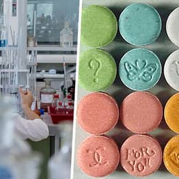Professor Accused Of Teaching Students To Make Ecstasy Faces Decade In Prison
