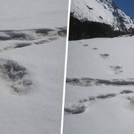 Indian Army Claims to Have Found Yeti Footprints