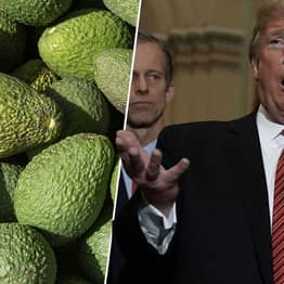 America Could Run Out Of Avocados In Weeks If Trump Closes Border