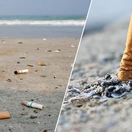 Cigarette Butts Are The Ocean's Single Largest Source Of Pollution