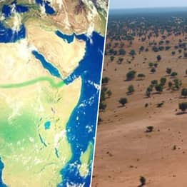 Countries Have Begun Work On A 'Great Green Wall' To Stop Poverty