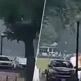 Man Sets Himself On Fire On Lawn Outside The White House Lawn