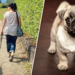 Science Proves Owning A Dog Is Good For Your Health
