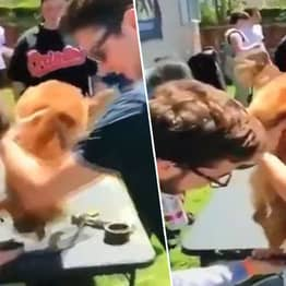 Students Suspended After Forcing Puppy To Do Keg Stand