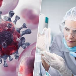Scientists Claim Cancer Could Be 'Manageable Disease' Within Ten Years