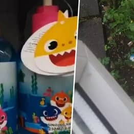 Mum Buys Baby Shark Singing Handwash, Ends Up Throwing It Out Window