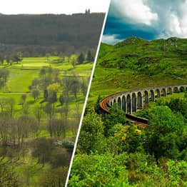 Scotland Plants 22 Million Trees To Help Combat Global Climate Emergency