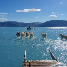 Remarkable Photo Highlights Extreme Arctic Ice Melt Due To Climate Crisis
