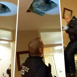 Wanted Man Falls Through Ceiling Onto Police Officers Hunting Him
