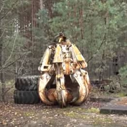 Chernobyl Claw So Radioactive 'One Touch Would Kill' Found In Forest