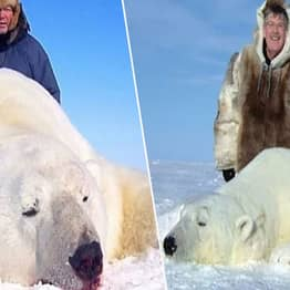 Polar Bear Trophy Hunters Pose By Endangered Animal Corpses In The Arctic