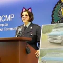 Police Accidentally Livestream Murder Press Conference With Cat Filter