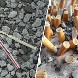 Cigarette Butts Are Most Littered Item Worldwide And More Harmful Than Plastic Straws
