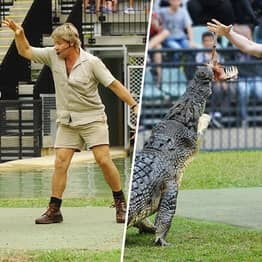 Steve Irwin And His Son Fed The Same Crocodile At The Same Place 15 Years Apart