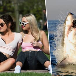 Selfies Are Five Times More Deadly Than Shark Attacks