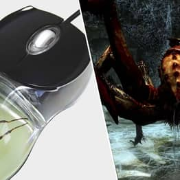 This Nightmarish Computer Mouse Has An Actual Spider Inside, And I Hate It