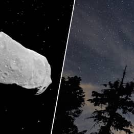 NASA Has Found Sugar In Meteorites That Crashed To Earth