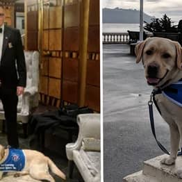 Army Veteran Turned Away By Restaurant For Having PTSD Support Dog