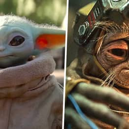 Fans Can't Decide If Baby Yoda Or Babu Frik Is The Cutest Character In Star Wars