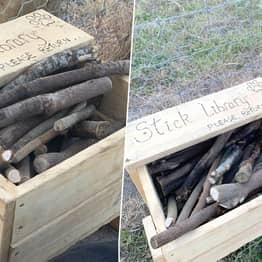Man Creates Stick Library In Local Park For Neighbourhood Dogs