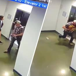 Guy Saves Dog From Being Strangled By Lift After Owner Fails To Realise Mistake