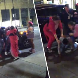Hero Furries Stepped In And Stopped Domestic Violence Assault