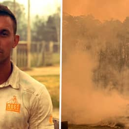 Zoo Staff Stay Behind To Save Animals From Dying In Bushfire