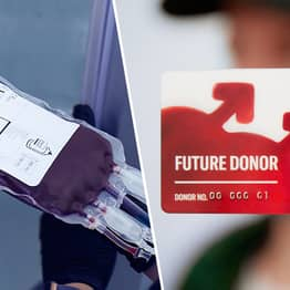 Illegal Blood Bank Donors Urge Government To Let Them Give Blood