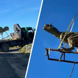 Guernsey Dad Accidentally Orders Six-Metre-Long Dinosaur For Son