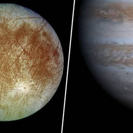 Expert Claims Jupiter's Moon Europa Is Home To 'Octopus-Like Aliens'