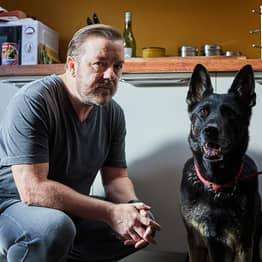 Ricky Gervais Confirms After Life Series 2 Is Coming To Netflix On April 24
