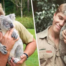 Robert Irwin Is The Spitting Image Of Late Dad Steve As He Cuddles A Koala