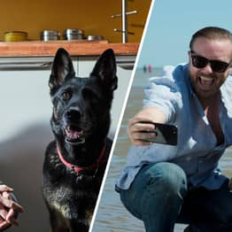 Ricky Gervais Confirms Dog Doesn't Die In After Life Season 2