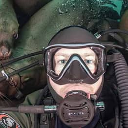 Mob Of Sea Lions Photobomb Diver's Selfie In Once-In-A-Lifetime Moment