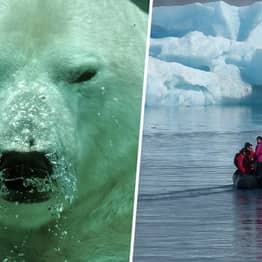 Scientists Discover Chlamydia Species Deep In The Arctic Ocean