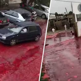 Street Turns Into 'Sea Of Blood' After Slaughterhouse Accident In Buenos Aires
