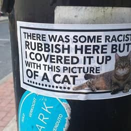 Hero Covers Up Racist Graffiti With Pictures Of Cats