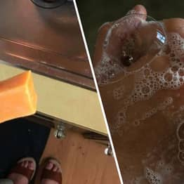 Washington Woman Realises She's Washing Her Hands With Block Of Cheese