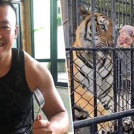 Australian Man Arrested After Breaking Into Thai Zoo To Feed Abandoned Animals