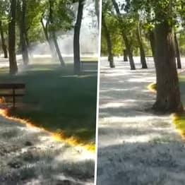 People Left Baffled By Mesmerising Video Of Fire Burning Through Park