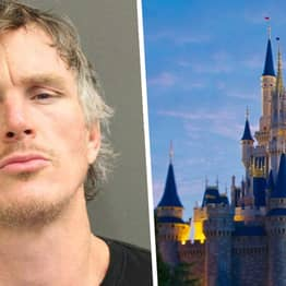 Alabama Man Camps Out At Walt Disney World's Discovery Island While Resort Is Closed