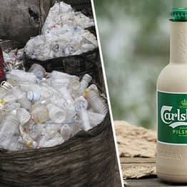 New Plant-Based Bottles Backed By Coca-Cola And Carlsberg Will Degrade In Just A Year
